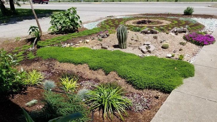 Чоловік вирощує сад в пам'ять про дружину. А по ночах йому допомагає таємничий незнайомець