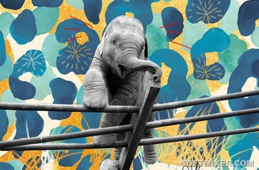 Смішні втечі братів наших менших із зоопарків