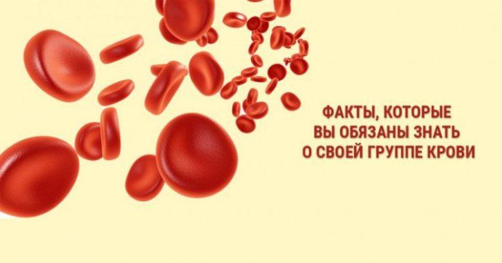 7 фактів, які ви зобов'язані знати про свою групу крові