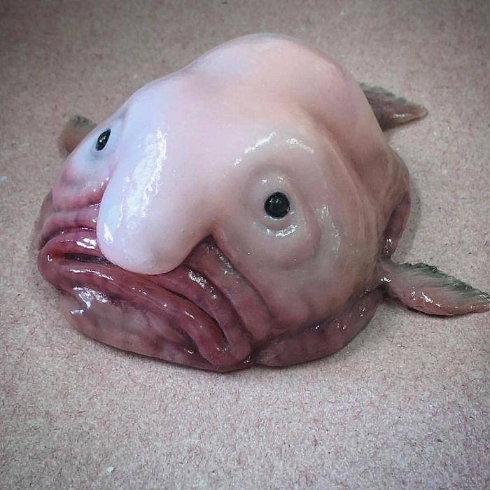 Російський рибалка показав нові фото морських чудовиськ: Люди просять більше не робити цього