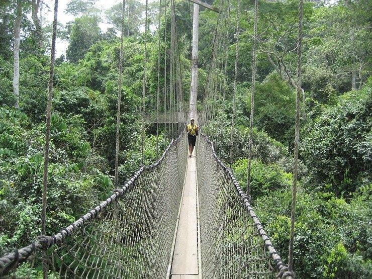 20 мостів, від одного погляду на які можна стати заїкою