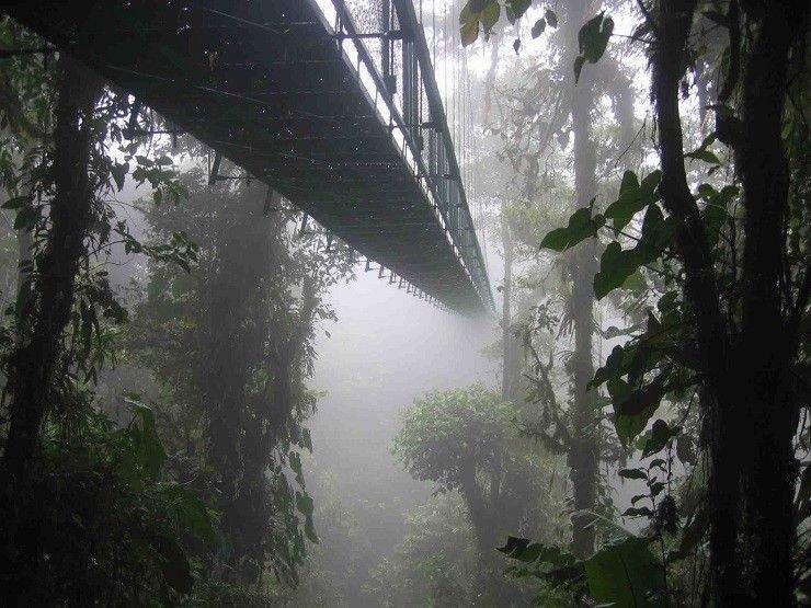 20 мостів, від одного погляду на які можна стати заїкою 11