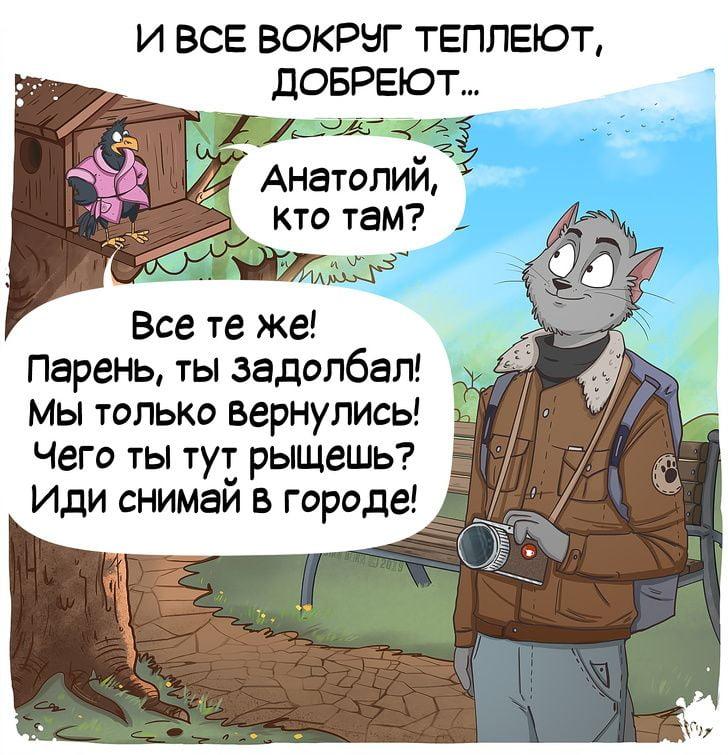 Зустрічаємо весну з дуже теплим коміксом про кота Степана