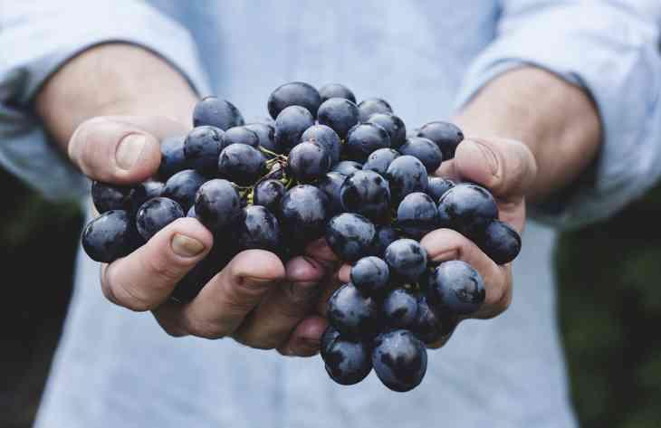 Стоматологи назвали фрукт, який допомагає при карієсі