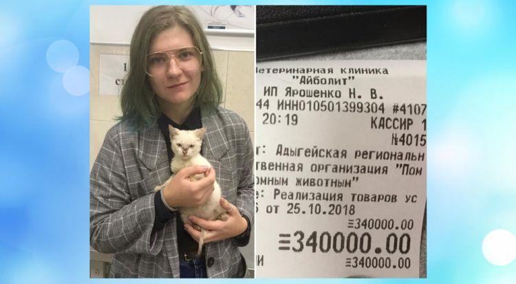 Дівчина оплатила борг притулку для тварин в третину мільйона