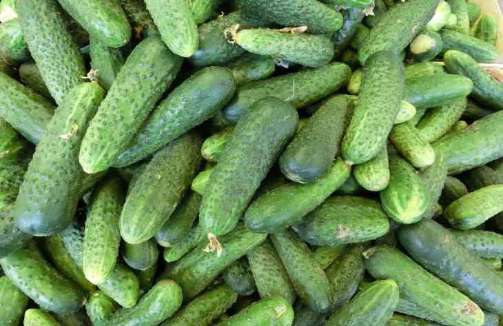10 причин, чому потрібно їсти огірки