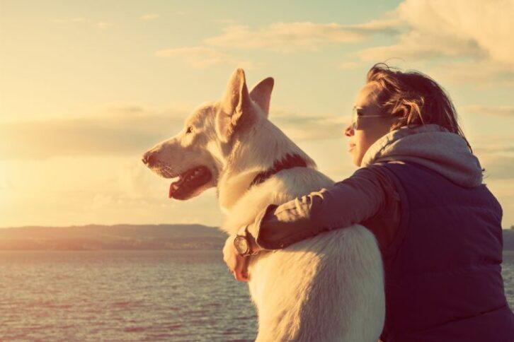 Собака на одній хвилі зі своїм господарем