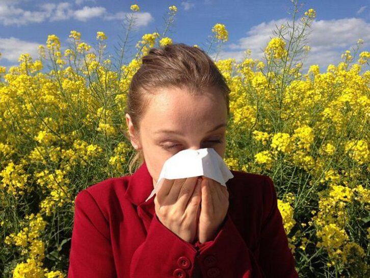 Названі правила першої допомоги при укусі бджоли у алергіків