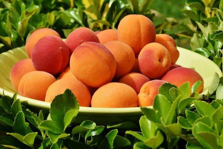 Лікарі розповіли, кому шкідливо їсти абрикоси